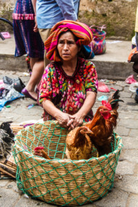 Indigenous women in Chichicastenango trying to sell some chickens