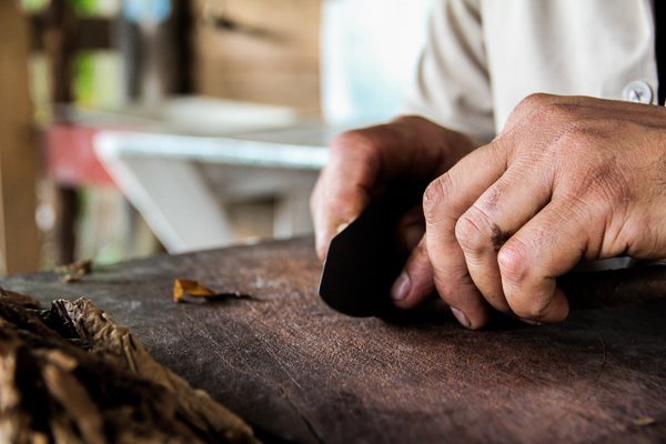 how to make a cigar from scratch