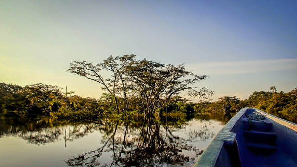 Sailing through the winding maze of the Amazon river