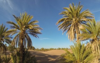 Cheap sahara tour morocco
