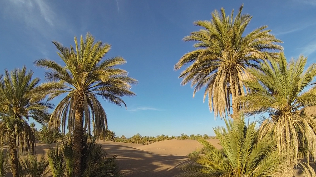 How To Find A Cheap Sahara Desert Tour In Morocco